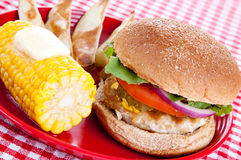 Healthy Turkey Burger Meal Stock Image