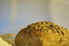 Healthy uncut bread Stock Image