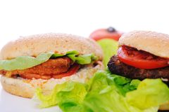 Healthy and unhealthy food Royalty Free Stock Photography
