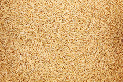 Healthy unpolished brown rice for pattern and background Royalty Free Stock Images