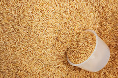 Healthy unpolished brown rice with plastic litre Royalty Free Stock Photos