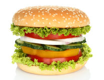 Healthy vegan burger with raw vegetables Royalty Free Stock Image