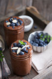 Healthy vegan chocolate chia pudding royalty free stock image
