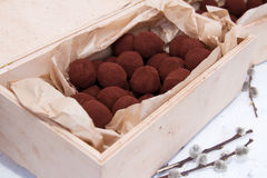 Healthy vegan chocolate truffles. Homemade healthy vegan chocolate truffles with willow Royalty Free Stock Photos