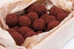 Healthy vegan chocolate truffles. Homemade healthy vegan chocolate truffles with willow Royalty Free Stock Photo