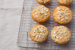 Healthy vegan oat muffins, apple and banana cakes on a cooling rack Grey textile background Stock Photography