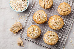 Healthy vegan oat muffins, apple and banana cakes on a cooling rack Top view Copy space Royalty Free Stock Photos