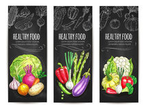 Healthy vegetable food sketch banners set Royalty Free Stock Images