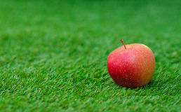 Healthy vegetable food theme: red ripe apple lying on green grass Stock Photos