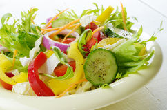 Healthy vegetable fresh organic salad Stock Photography