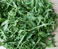 Healthy vegetable ruccola Stock Photography