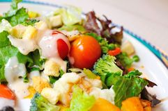 Healthy vegetable salad Royalty Free Stock Photos