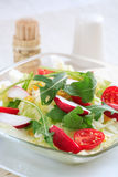 Healthy vegetable salad Royalty Free Stock Photos
