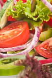 Healthy vegetable salad close-up Royalty Free Stock Image