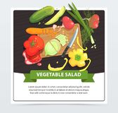 Cooking vegetable salad in process stock illustration