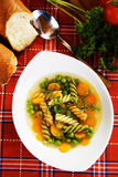 Healthy vegetable soup Stock Images
