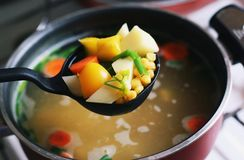 Healthy vegetable soup Stock Image