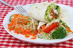 Healthy Vegetable Wrap and Salad Royalty Free Stock Images