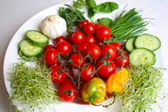 Healthy vegetables. On the plate Stock Photos