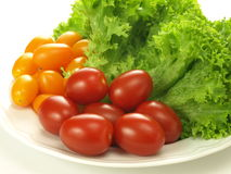 Healthy vegetables Stock Photography