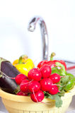 Healthy vegetables Stock Image