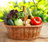 Healthy Vegetables in a Basket Royalty Free Stock Photography