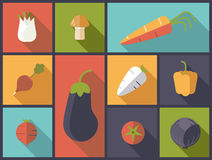 Healthy vegetables icons vector illustration. Stock Images