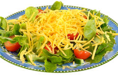 Healthy Vegetarian Cheese Salad Meal Stock Image