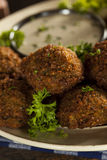 Healthy Vegetarian Falafel Balls Stock Photography