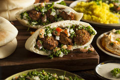 Healthy Vegetarian Falafel Pita Royalty Free Stock Photography