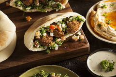 Healthy Vegetarian Falafel Pita stock photos