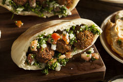 Healthy Vegetarian Falafel Pita Royalty Free Stock Photo