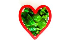 Healthy vegetarian heart Stock Images