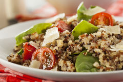 Healthy Vegetarian Quinoa Salad Royalty Free Stock Photos
