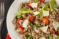 Healthy Vegetarian Quinoa Salad Stock Images
