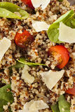 Healthy Vegetarian Quinoa Salad Royalty Free Stock Image