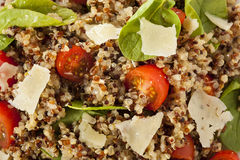 Healthy Vegetarian Quinoa Salad Royalty Free Stock Photos