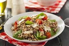 Healthy Vegetarian Quinoa Salad Royalty Free Stock Photo
