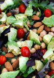 Healthy vegetarian salad with nuts and vegetables Royalty Free Stock Photos