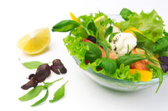 Healthy vegetarian Salad over white Royalty Free Stock Photography
