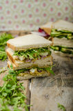 Healthy vegetarian sandwich Stock Image