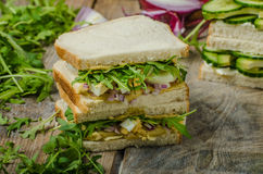 Healthy vegetarian sandwich Stock Images
