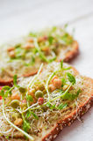 Healthy vegetarian sandwich with whole grain bread,alfalfa,hummu Royalty Free Stock Photos