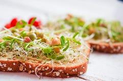 Healthy vegetarian sandwich with whole grain bread,alfalfa,hummu Stock Photo