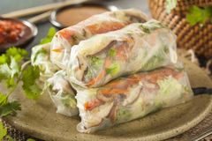 Healthy Vegetarian Spring Rolls Stock Image