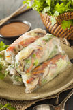 Healthy Vegetarian Spring Rolls Royalty Free Stock Photography