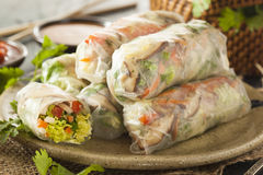 Healthy Vegetarian Spring Rolls Stock Photos