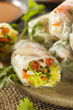 Healthy Vegetarian Spring Rolls Royalty Free Stock Images