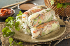 Healthy Vegetarian Spring Rolls Stock Photo