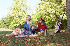 Healthy vegetarian or vegan picnic Royalty Free Stock Photography